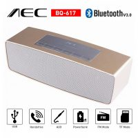 AEC Multifunction Bluetooth Speaker with Powerbank and FM Radio - Gold